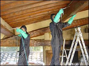 traitement charpente traitement termites meaux melun metz. Black Bedroom Furniture Sets. Home Design Ideas